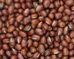 Where can I buy fresh Adzuki beans from a local farmer.
