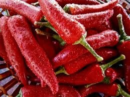 Where can I buy fresh Cayanne Pepper from a local farmer.