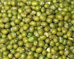 Where can I buy fresh Mung beans from a local farmer.