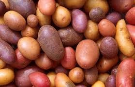 Where can I buy fresh Potato from a local farmer.