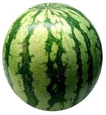 Where can I buy fresh Melon from a local farmer.