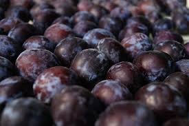 Where can I buy fresh Plum from a local farmer.