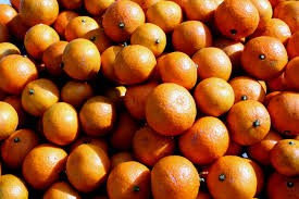 Where can I buy fresh Satsuma from a local farmer.