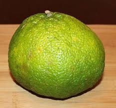 Where can I buy fresh Ugli fruit from a local farmer.