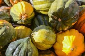 Where can I buy fresh Acorn squash from a local farmer.