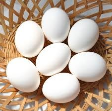 Where can I buy fresh Duck Eggs from a local farmer.