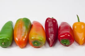 Where can I buy fresh Anaheim Pepper from a local farmer.