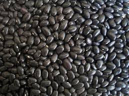 Where can I buy fresh Black beans from a local farmer.
