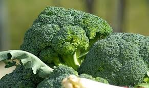 Where can I buy fresh Broccoli from a local farmer.