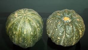Where can I buy fresh Kabocha Squash from a local farmer.