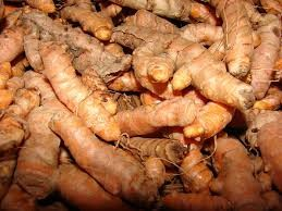 Where can i buy Olena Turmeric Ginger?  Find out which local farmer has Olena Turmeric Ginger for sale.