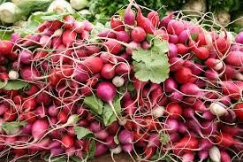 Where can I buy fresh Radish from a local farmer.