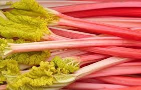 Where can I buy fresh Rhubarb from a local farmer.