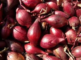 Where can i buy Shallot?  Find out which local farmer has Shallot for sale.
