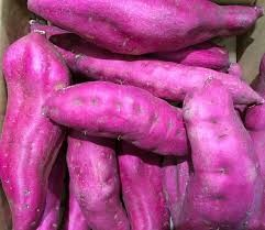 Where can i buy Sweet potato - Purple Plant?  Find out which local farmer has Sweet potato - Purple Plant