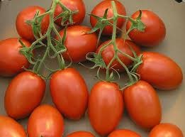 Where can i buy Tomato - Roma?  Find out which local farmer has Tomato - Roma for sale.