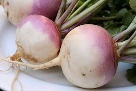 Where can i buy Turnip?  Find out which local farmer has Turnip for sale.