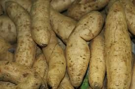 Where can I buy fresh Yam from a local farmer.