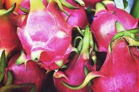 Where can I buy fresh Dragonfruit from a local farmer.