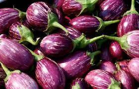 Where can I buy fresh Egg Plant from a local farmer.