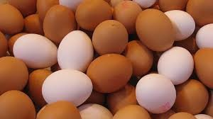 Where can i buy Chicken Eggs?  Find out which local farmer has Chicken Eggs for sale.